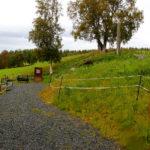 Olavskilda in Verdal