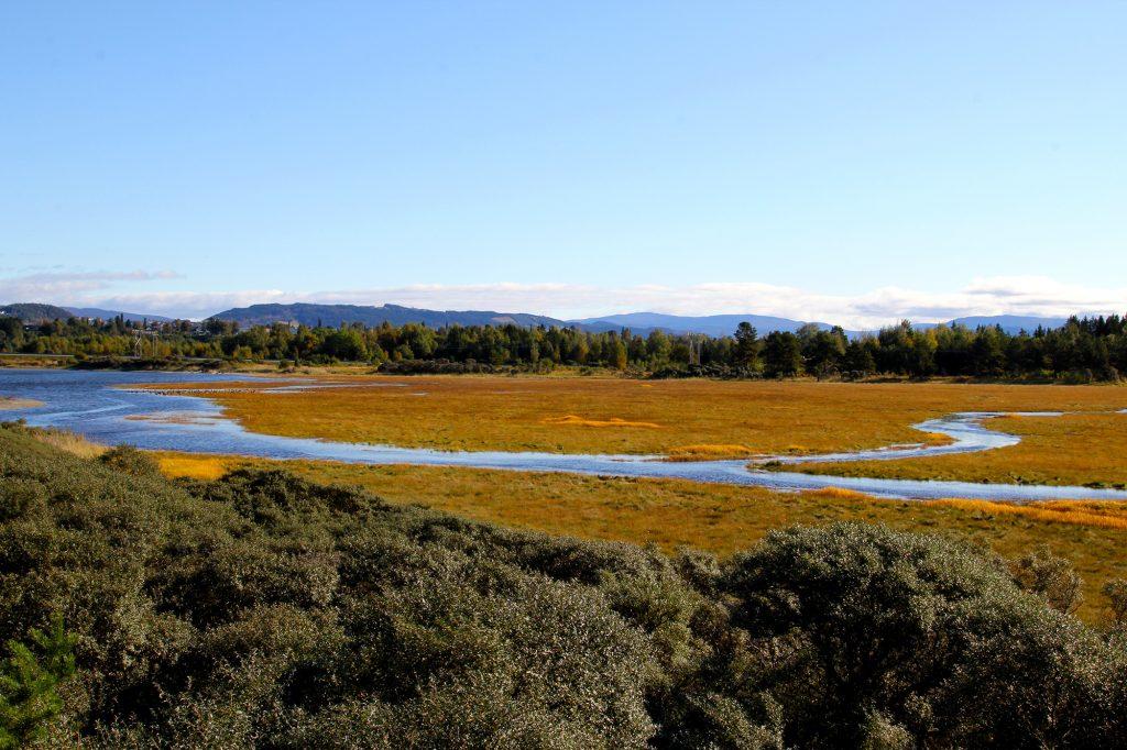 Ørin Bird reserve
